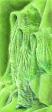 Veiled Object