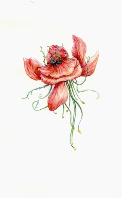 Flower Cephlapod